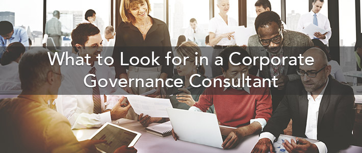 Governance Consultant